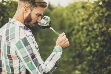 Young winemaker tasting red wine in vineyard